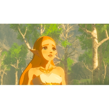 Nintendo The Legend of Zelda: Breath of the Wild videogioco