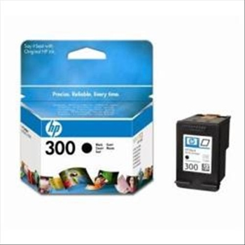 HP CARTUCCIA NERO NO 300 VIVERA