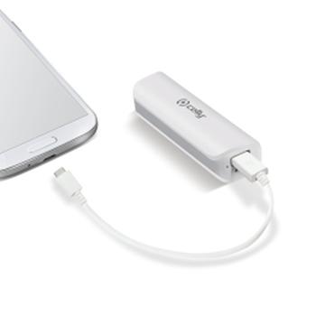 Celly Li-Ion 2600mAh batteria portatile Bianco Ioni di Litio